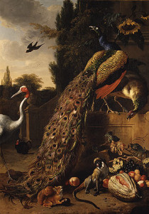 """Peacocks"" 1683, Melchior d'Hondecoeter. Photo courtesy of The Metropolitan Museum of Art"
